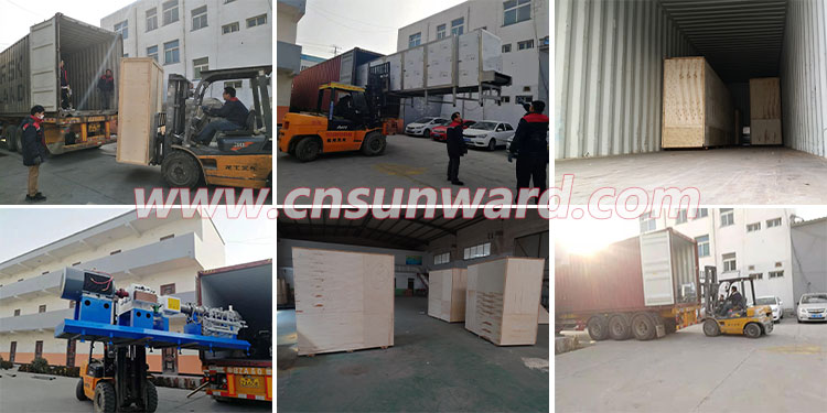 fish feed production line shipping